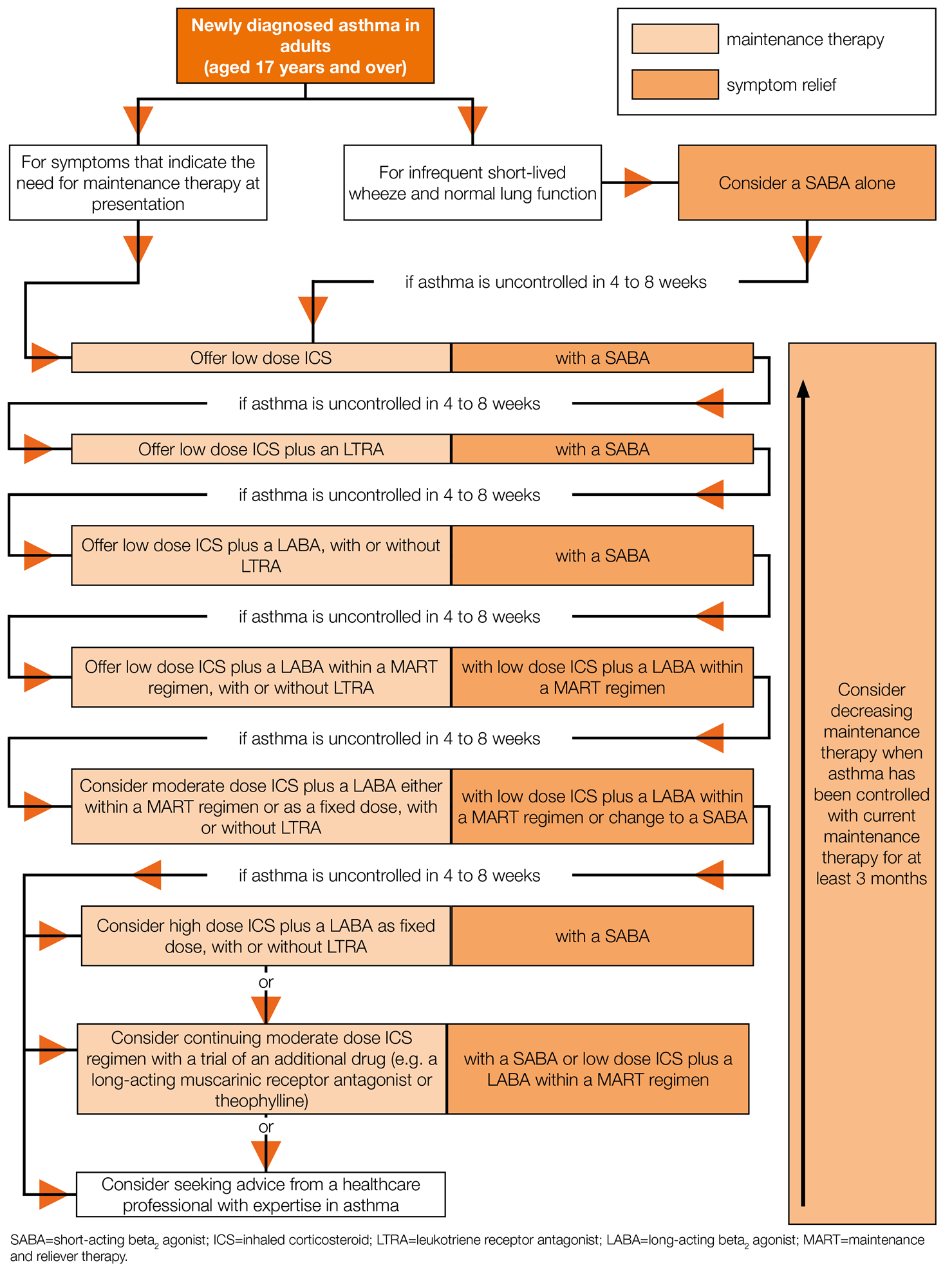 Therapeutic Strategies in Asthma: Current Treatments