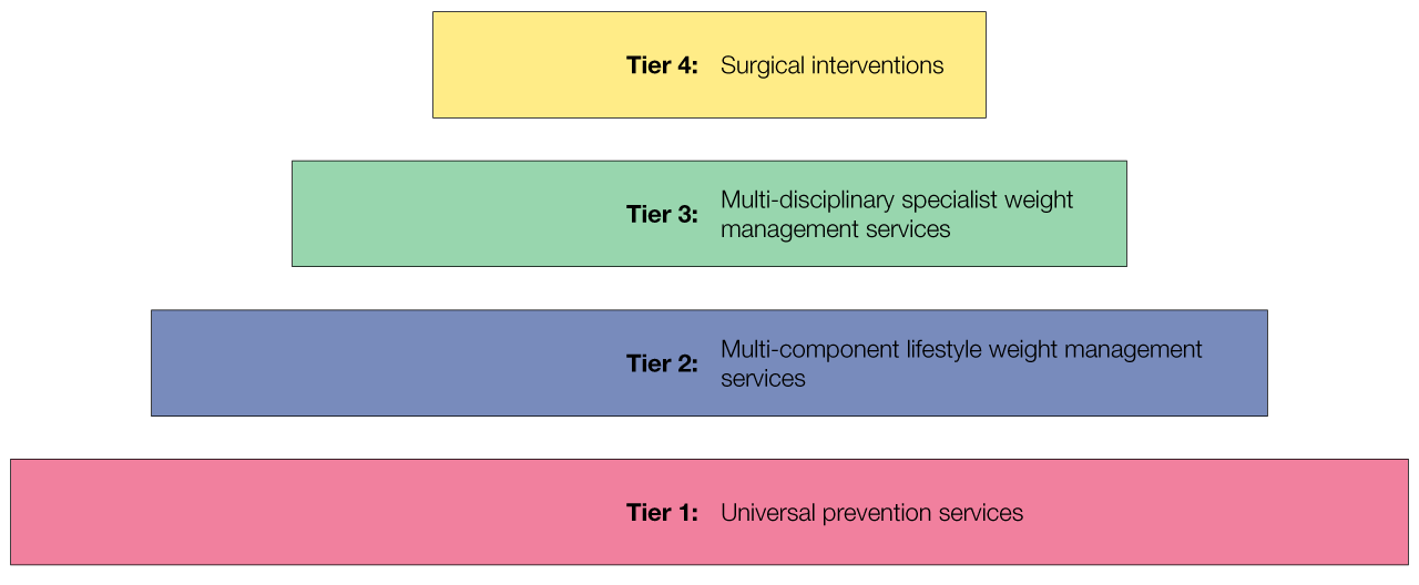 Brief Intervention May Prevent >> Let S Talk About Weight Guideline Phe Dh Dwp Guideline