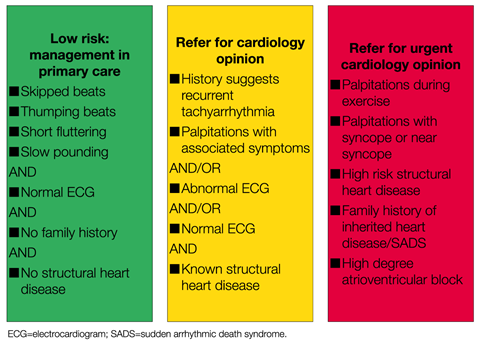 Risk stratification for heart palpitations