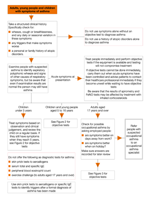 NICE asthma guideline: diagnosis and monitoring | NICE guideline