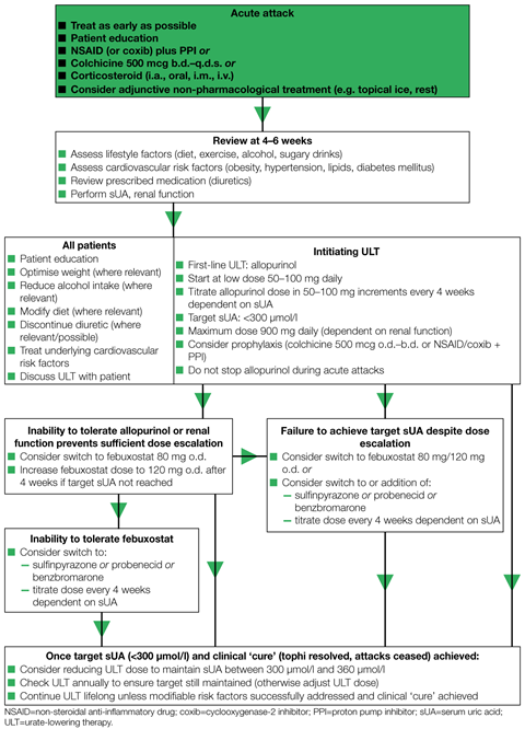 Algorithm for the management of gout 1280x1776