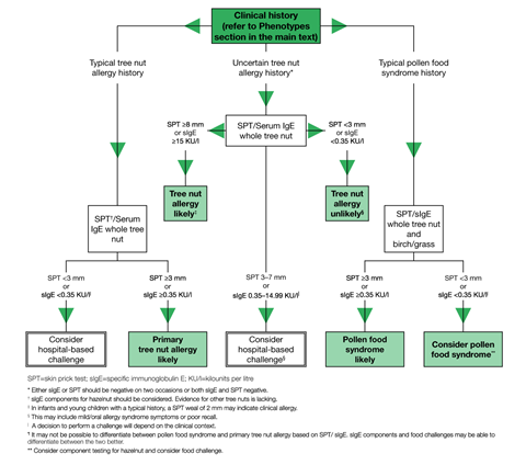 algorithm for the diagnosis of tree allergy