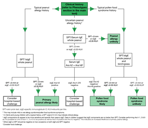 algorithm for the diagnosis of peanut allergy