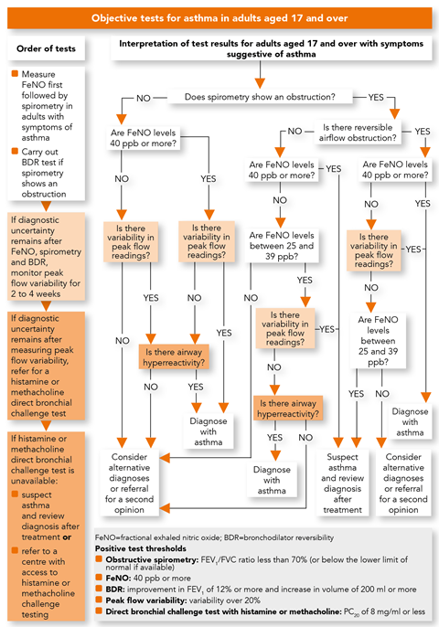 NICE asthma guideline: diagnosis and monitoring | NICE ...