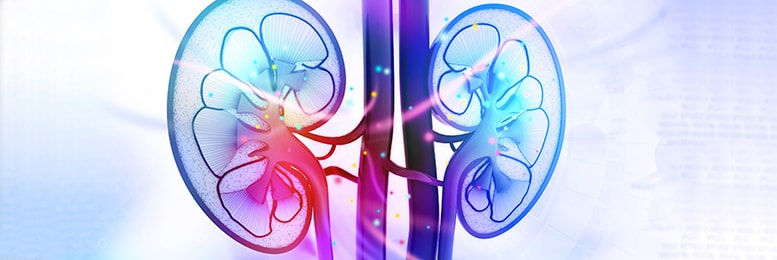 renal conditions
